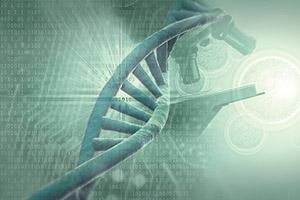 Bestimmung der DNA mittels Durchflusszytometrie wird verbreitet ausgeführt
