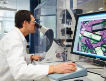Kooperation zwischen Bayer und X-Chem