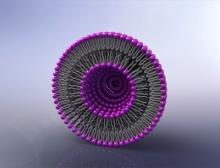 Ein Lipid Nano Particel (LNP) in schematischer Darstellung