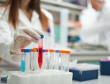Pharmaunternehmen nutzen die Crispr/Cas9-Technik, um neue Gentherapien für Patienten mit Erbkrankheiten zu entwickeln